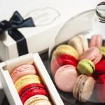Macarons Esplanade Gourmet Collection